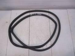 Уплотнитель двери Nissan Teana 2 (J32)