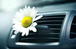 Очистка системы вентиляции и кондиционирования автомобиля от запахов