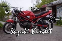 Suzuki GSF 250 Bandit, 1991
