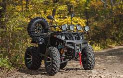 Квадроцикл Tiger Max Grade 300, 2020
