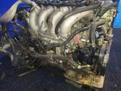 Двигатель, ДВС Bluebird