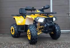 Motoland Wild Track X 200 Lux, 2020