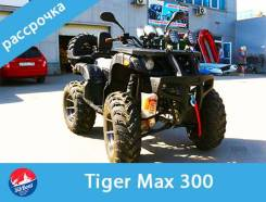 Tiger Max 300, 2020