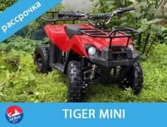 Tiger mini 49, 2020