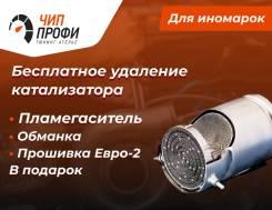 Удаление катализатора в Санкт-Петербурге (СПБ)