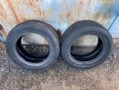Dunlop Graspic DS2, 225/55R16