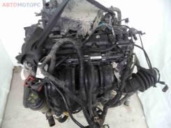 Двигатель Ford Focus III 2014, 1.6 л, бензин (PNDA FC855517)