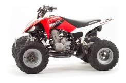 Motoland ATV 250S