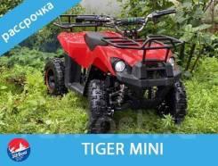 Tiger Mini, 2020