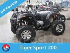 Tiger Sport, 2020