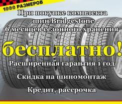 Bridgestone Blizzak DM-V2, 225/65/17