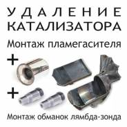 Бесплатное удаление катализатора / Прошивка Евро2