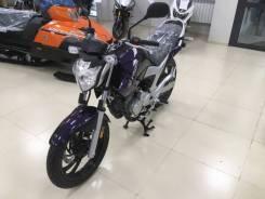 Yamaha FZ, 2019
