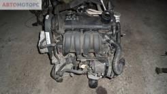 Двигатель Audi A3 8P, 2003, 1.6 л, бензин i (BGU)