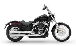 Harley-Davidson Softail Standart, 2021