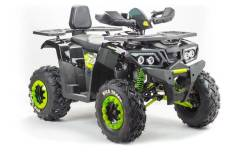 Квадроцикл MotoLand WILD TRACK 200 (машинокомплект) !, 2021