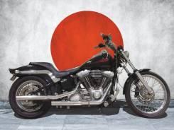 Harley-Davidson FXST, 2002