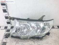 Фара передняя левая Toyota Land Cruiser Prado 150 Restail 2 галоген