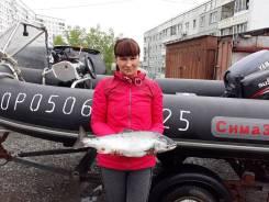 Продается риб сима 380 алюминий с прицепом