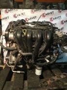 Двигатель Ford Focus 2.0л AODA
