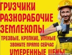 Услуги грузчиков , разнорабочих, землекопы, выполняем любые работы!