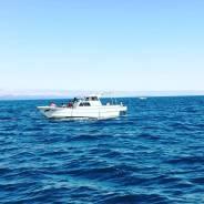 Услуги морского такси, смена экипажа на рейде, аренда катера.