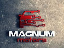Профессиональный чип-тюнинг от Magnum Motors