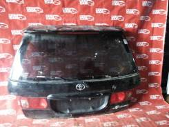 Дверь 5-я Toyota Ipsum 2000 SXM10-7139851 3S